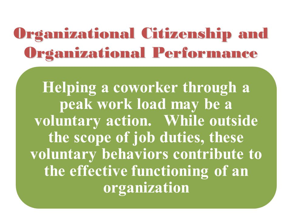 Organizational Citizenship and Organizational Performance