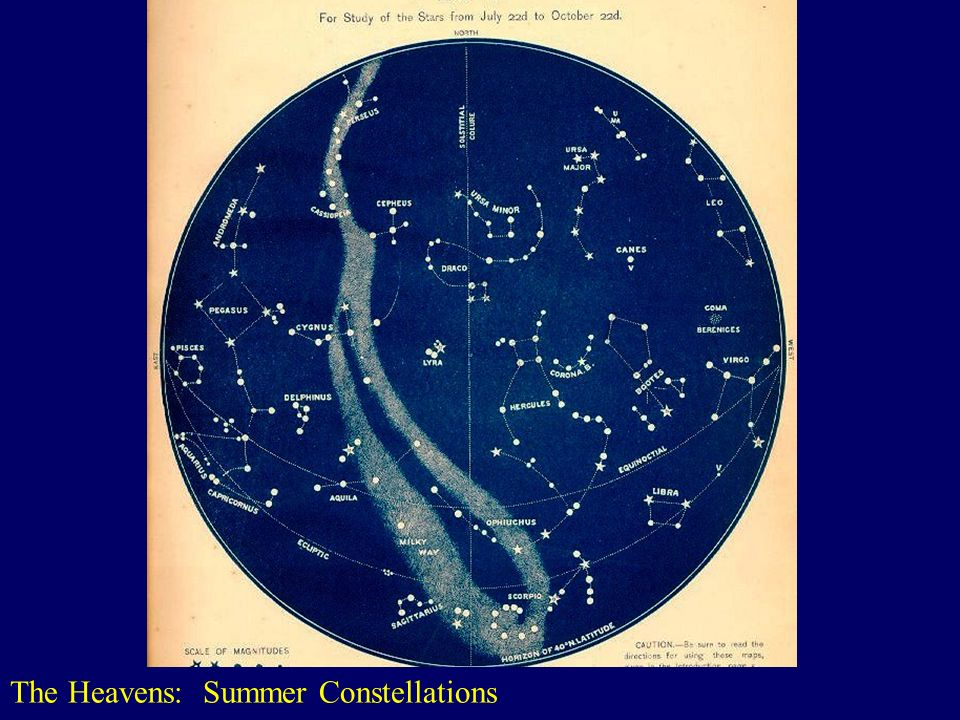 The Heavens: Summer Constellations