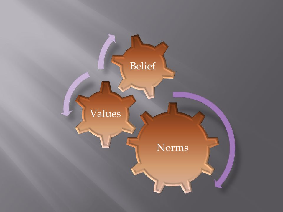 Norms Values Belief