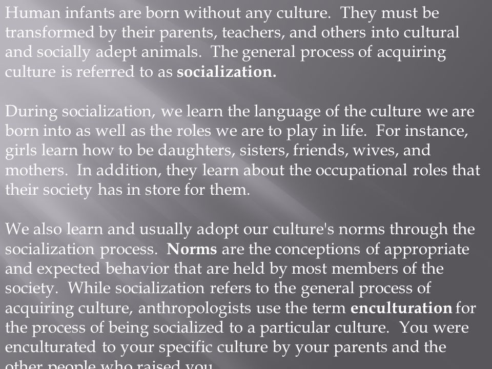 Human infants are born without any culture