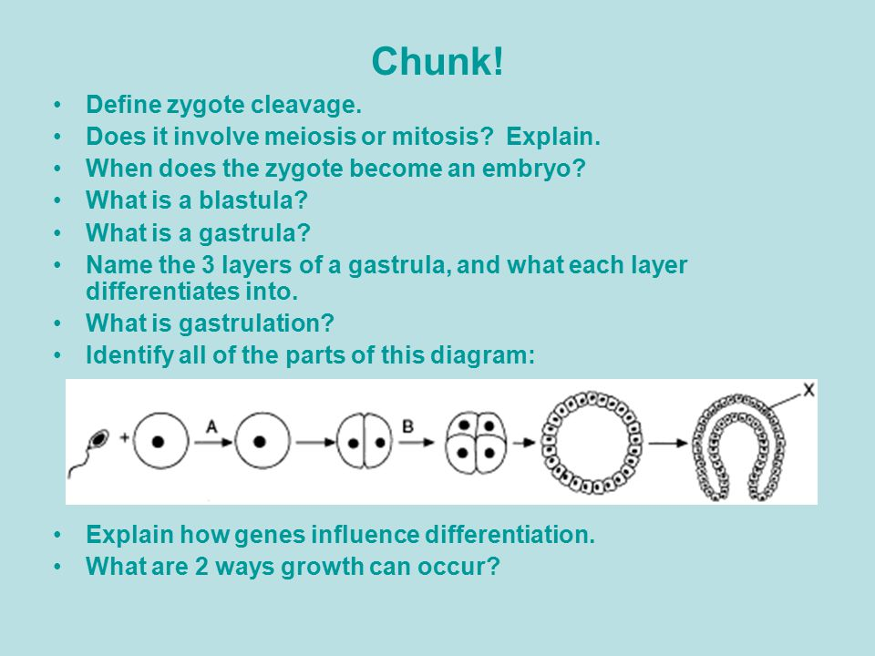chunk definition of chunk by merriamwebster