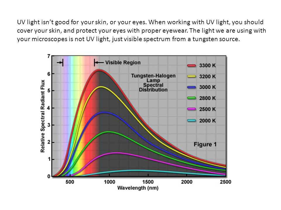 UV light isn't good for your skin, or your eyes