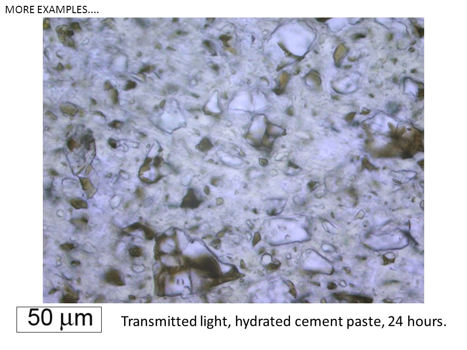 Transmitted light, hydrated cement paste, 24 hours.
