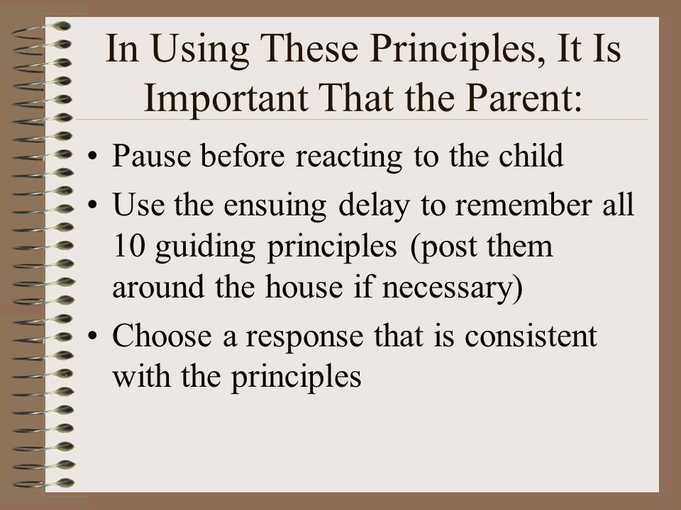 In Using These Principles, It Is Important That the Parent:
