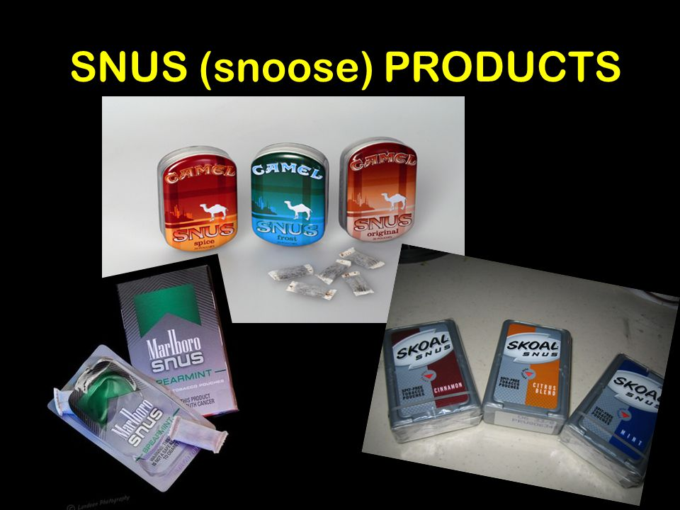 SNUS (snoose) PRODUCTS