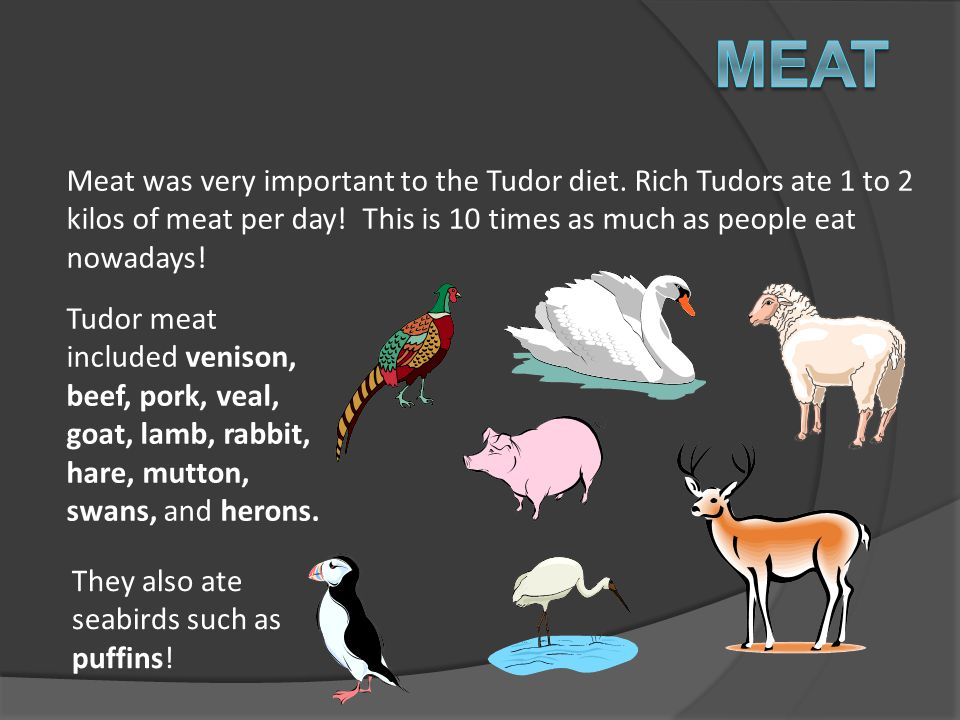 Meat Meat was very important to the Tudor diet. Rich Tudors ate 1 to 2 kilos of meat per day! This is 10 times as much as people eat nowadays!