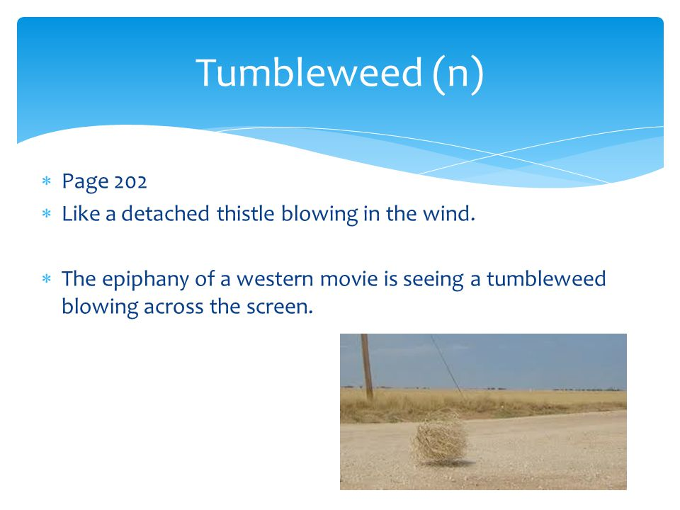 Tumbleweed (n) Page 202 Like a detached thistle blowing in the wind.