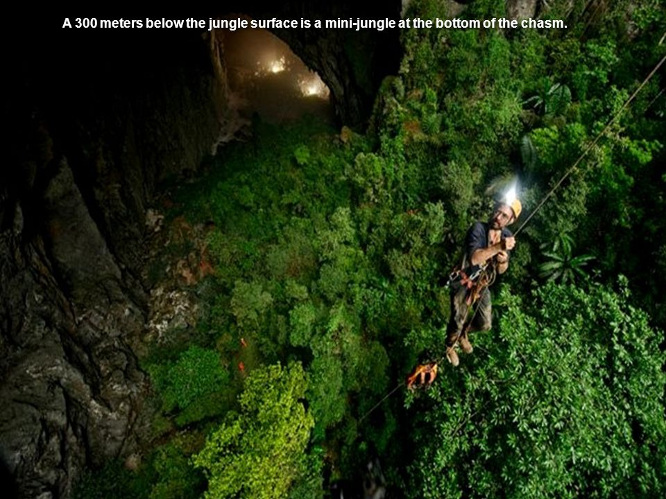 A 300 meters below the jungle surface is a mini-jungle at the bottom of the chasm.