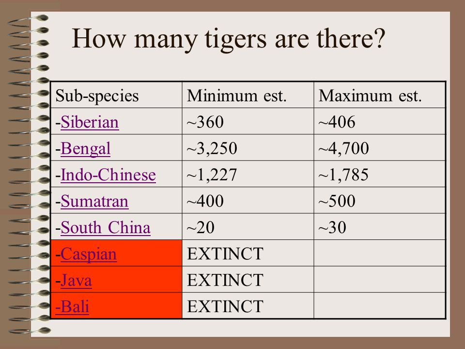How many tigers are there