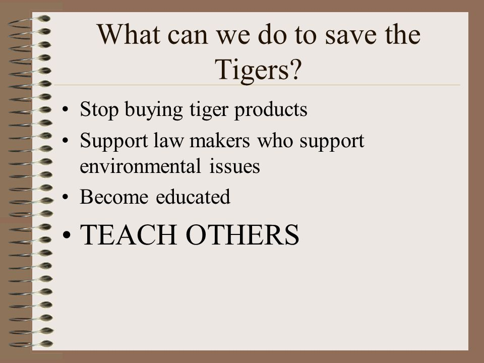 What can we do to save the Tigers