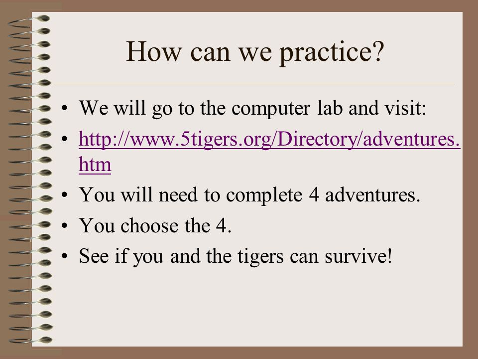 How can we practice We will go to the computer lab and visit: