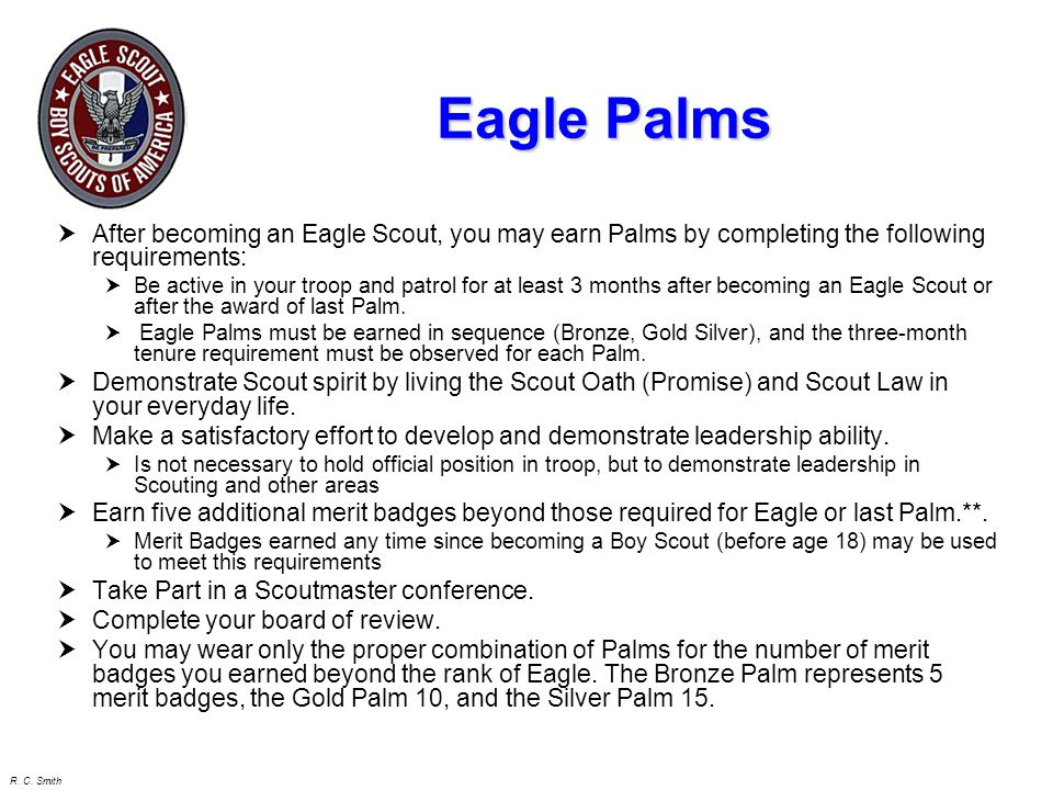 Eagle Palms After becoming an Eagle Scout, you may earn Palms by completing the following requirements: