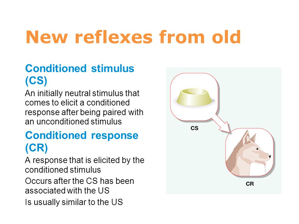 7 New reflexes from old Conditioned stimulus (CS)