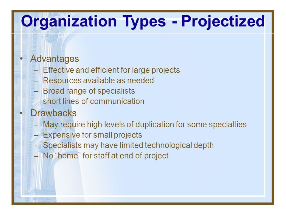 Organization Types - Projectized