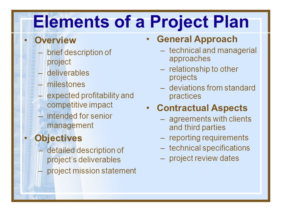 Elements of a Project Plan