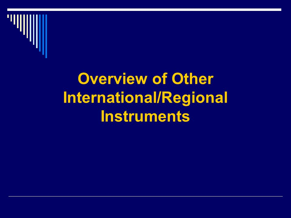 Overview of Other International/Regional Instruments
