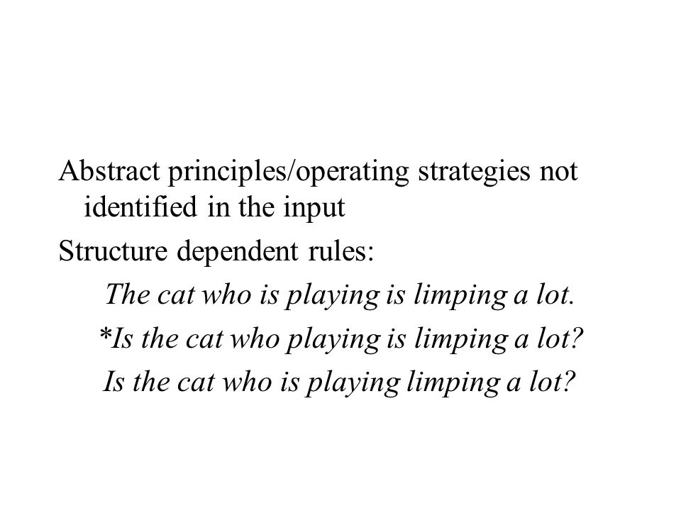 Abstract principles/operating strategies not identified in the input