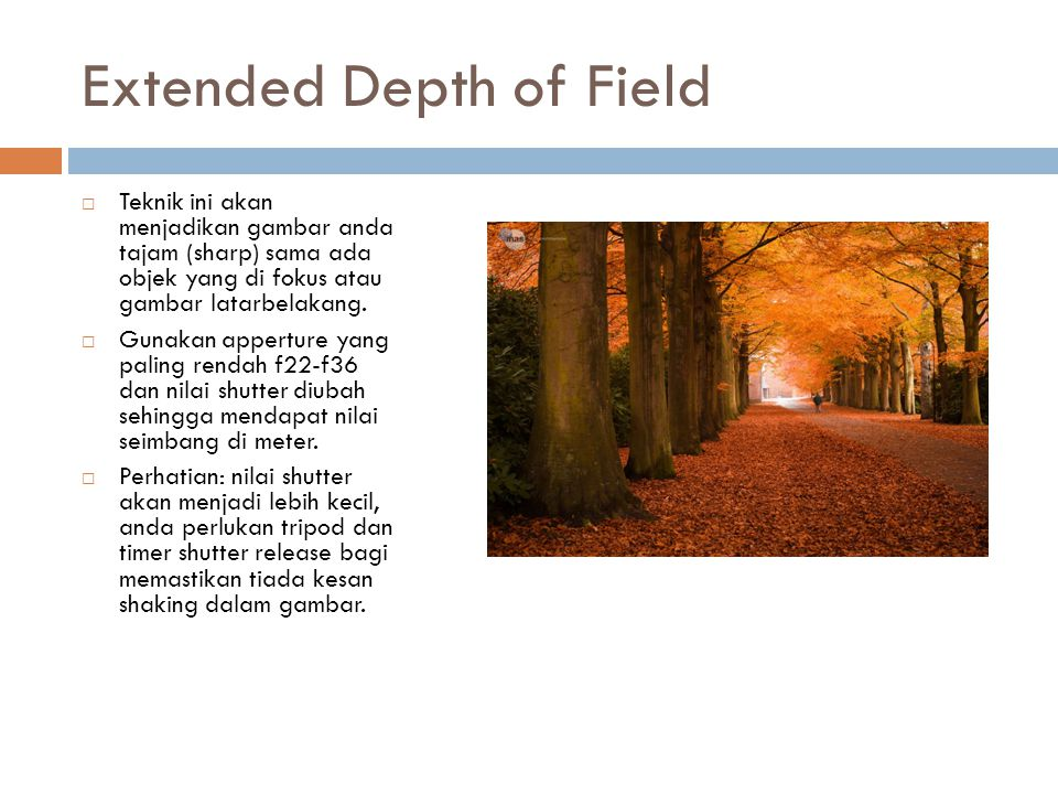 Extended Depth of Field