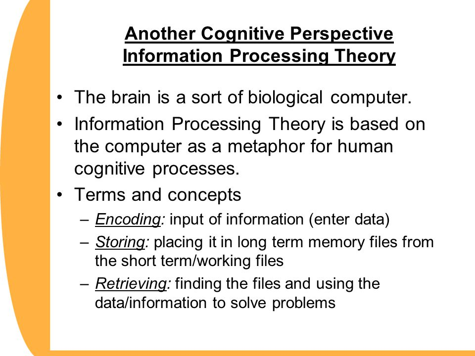 Another Cognitive Perspective Information Processing Theory