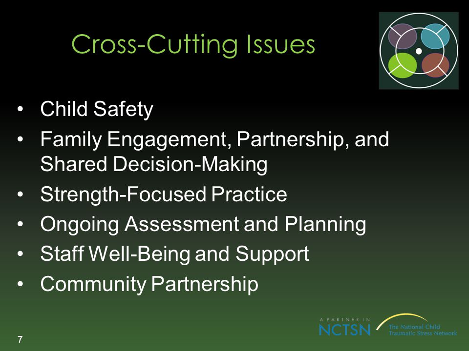 Cross-Cutting Issues Child Safety