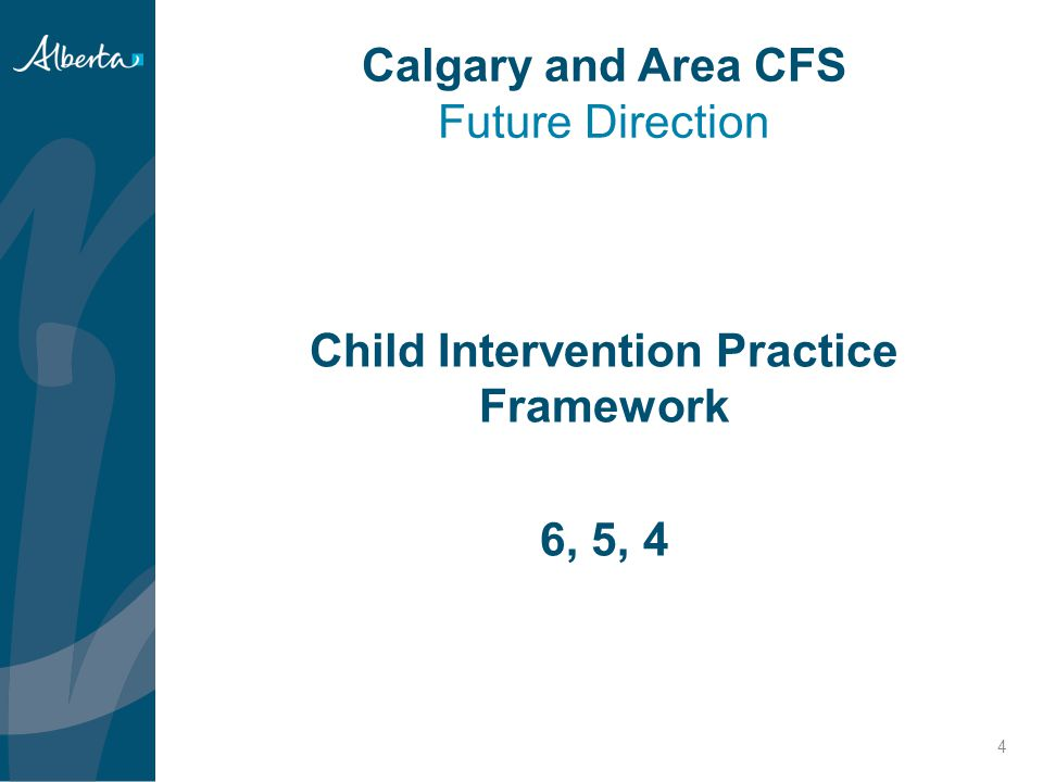 Calgary and Area CFS Future Direction