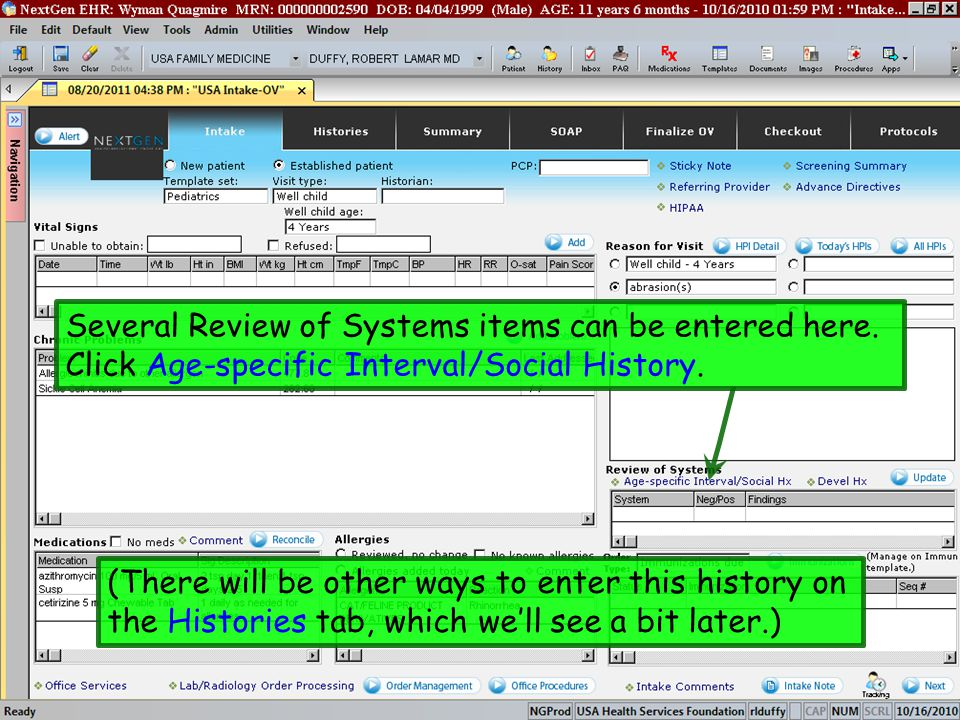 Several Review of Systems items can be entered here.