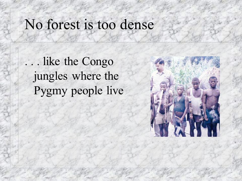 No forest is too dense . . . like the Congo jungles where the Pygmy people live