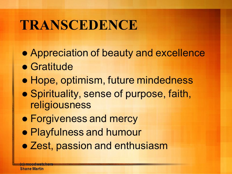 TRANSCEDENCE Appreciation of beauty and excellence Gratitude