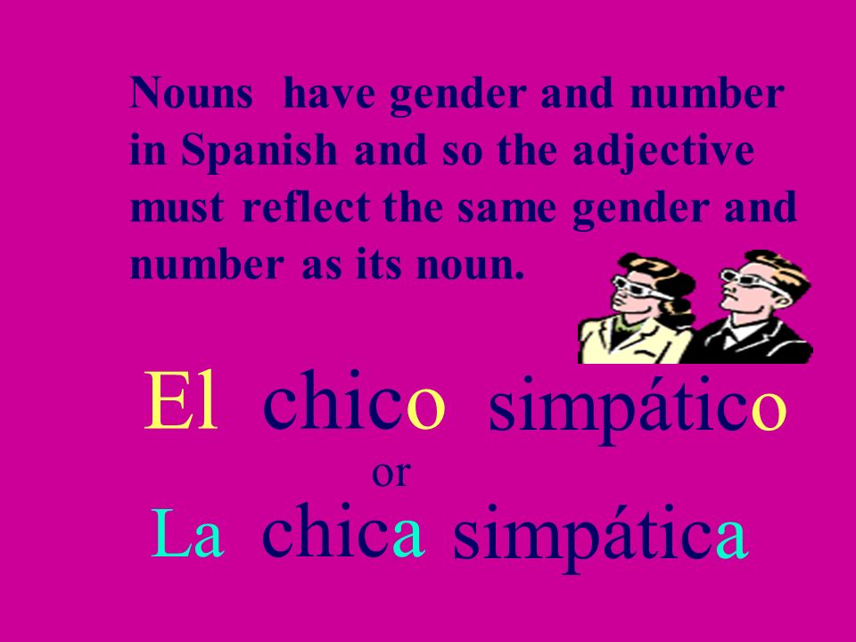 El chico simpático simpática La chica Nouns have gender and number