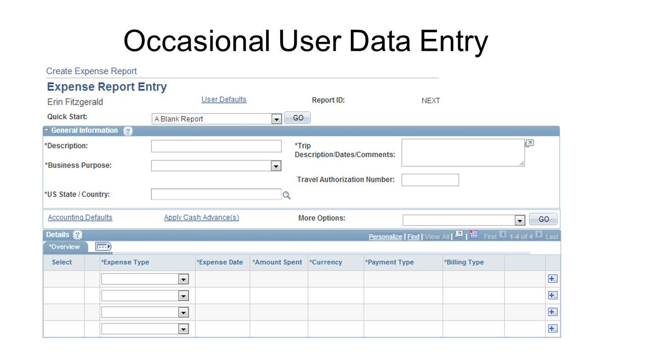 Occasional User Data Entry