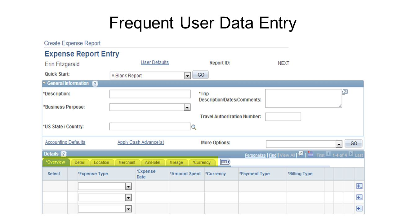 Frequent User Data Entry