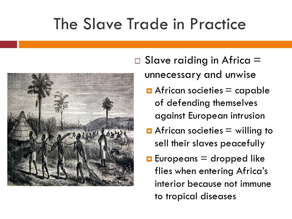 The Slave Trade in Practice