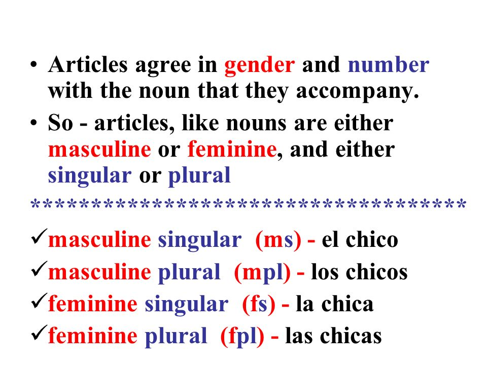 Articles agree in gender and number with the noun that they accompany.