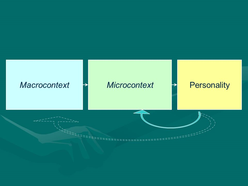 Macrocontext Microcontext Personality
