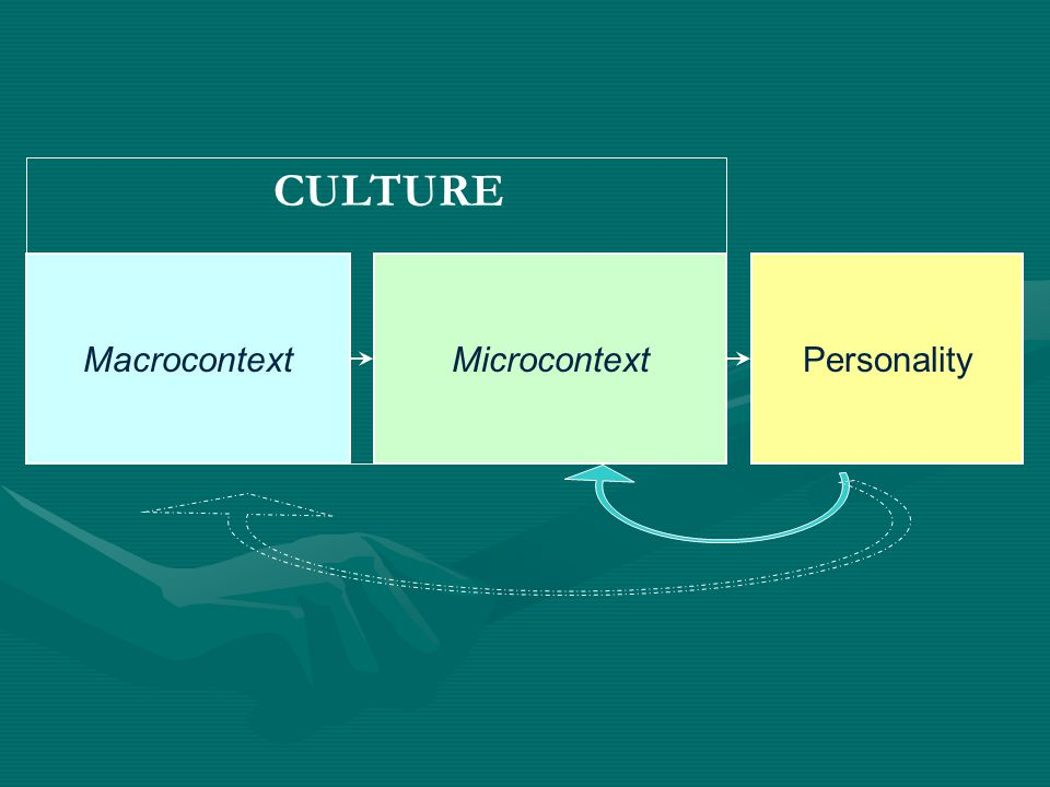 CULTURE Macrocontext Microcontext Personality