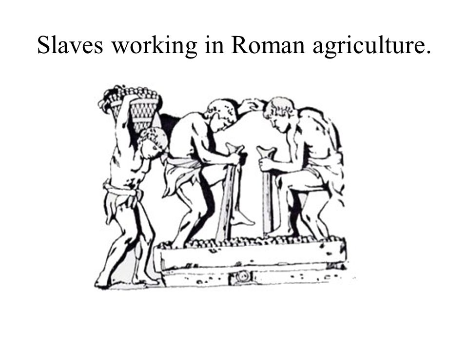 Slaves working in Roman agriculture.