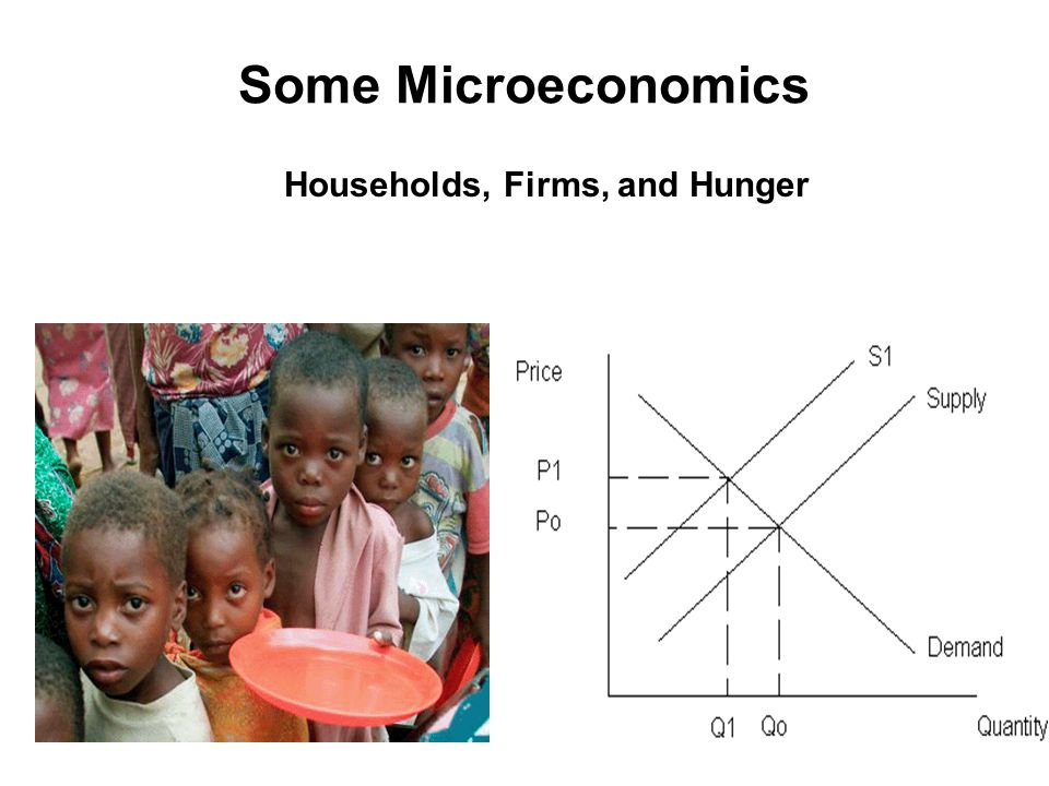 Households, Firms, and Hunger