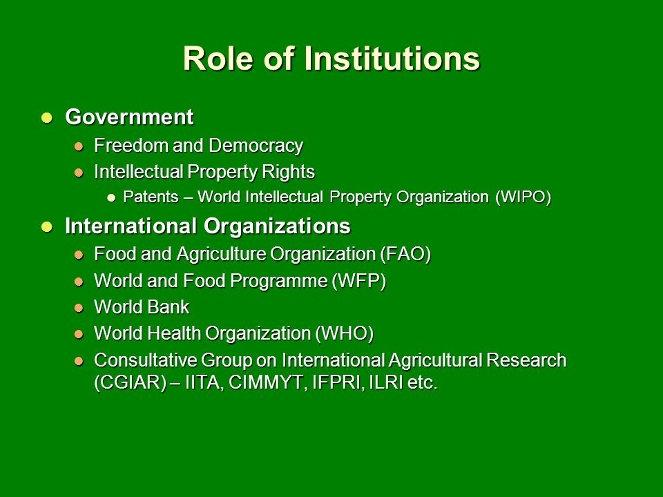 Role of Institutions Government International Organizations