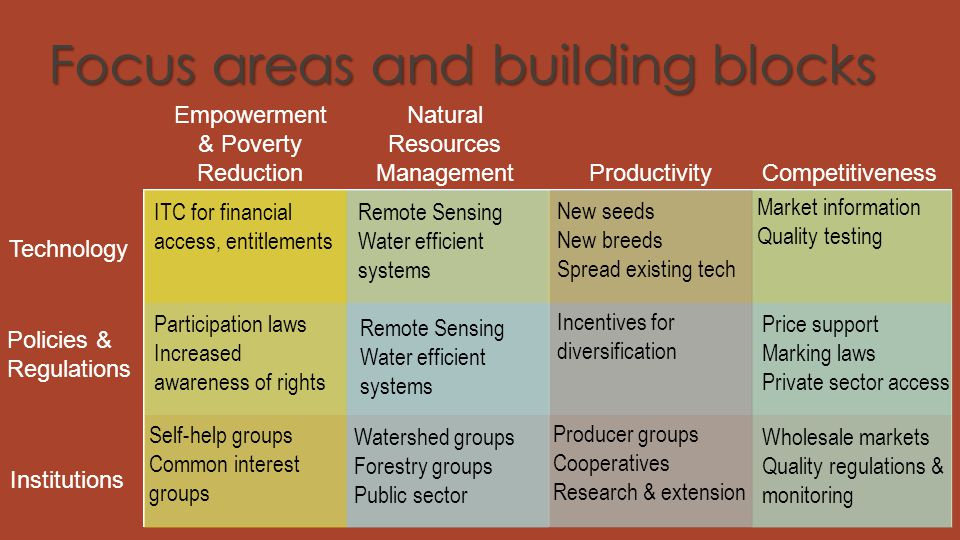 Focus areas and building blocks