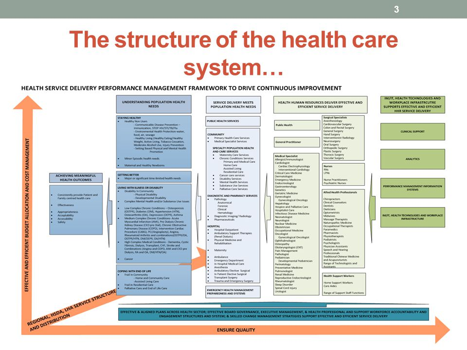 The structure of the health care system…