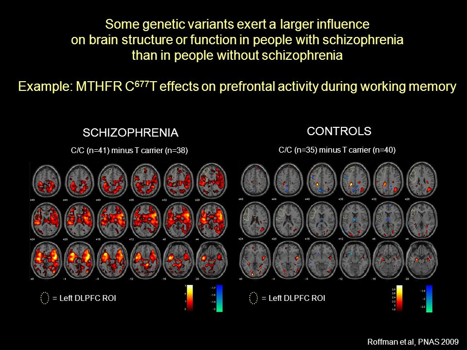 Some genetic variants exert a larger influence