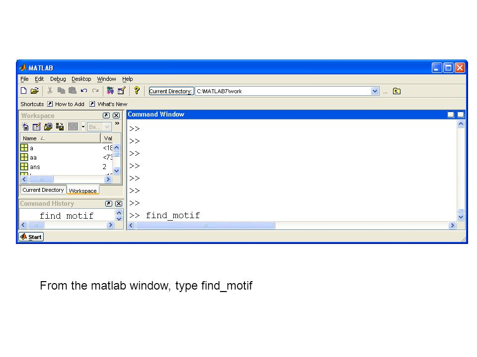 From the matlab window, type find_motif