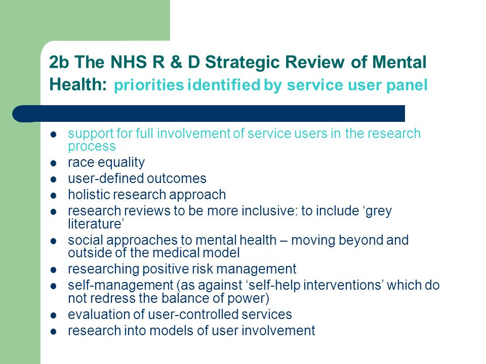 2b The NHS R & D Strategic Review of Mental Health: priorities identified by service user panel