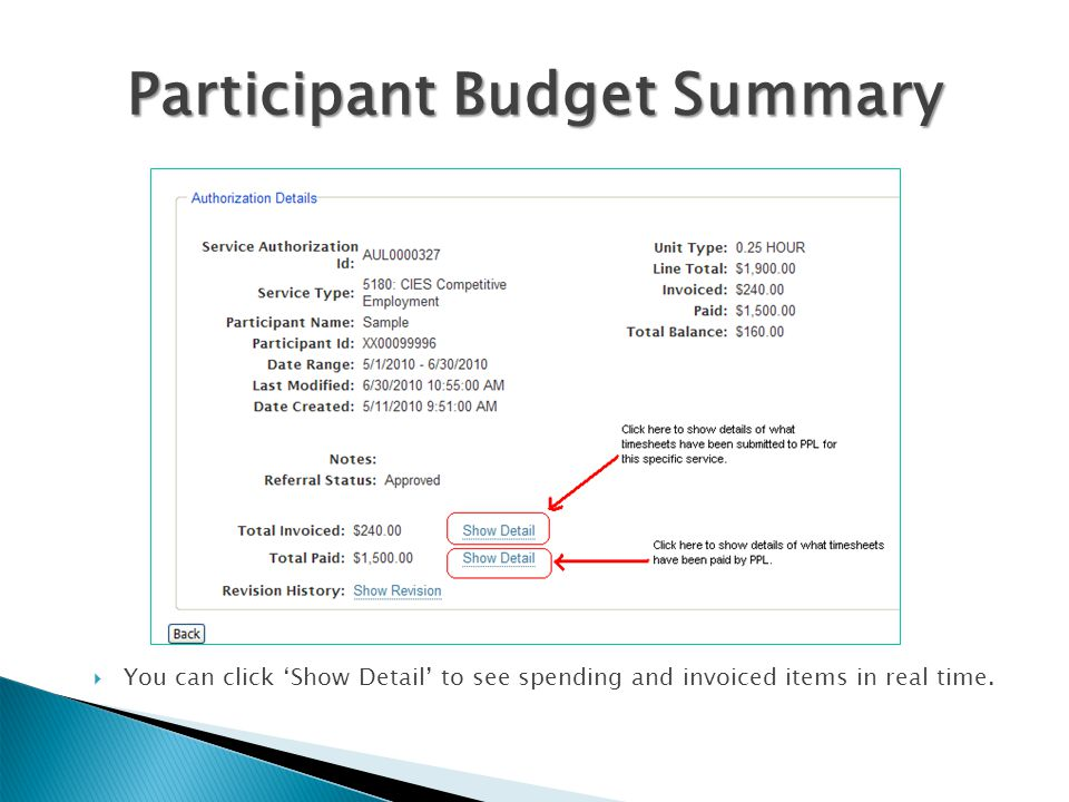 Participant Budget Summary
