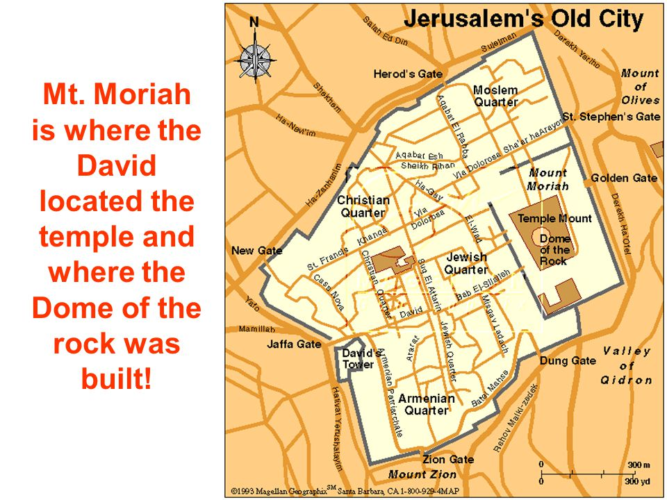 Mt. Moriah is where the David located the temple and where the Dome of the rock was built!