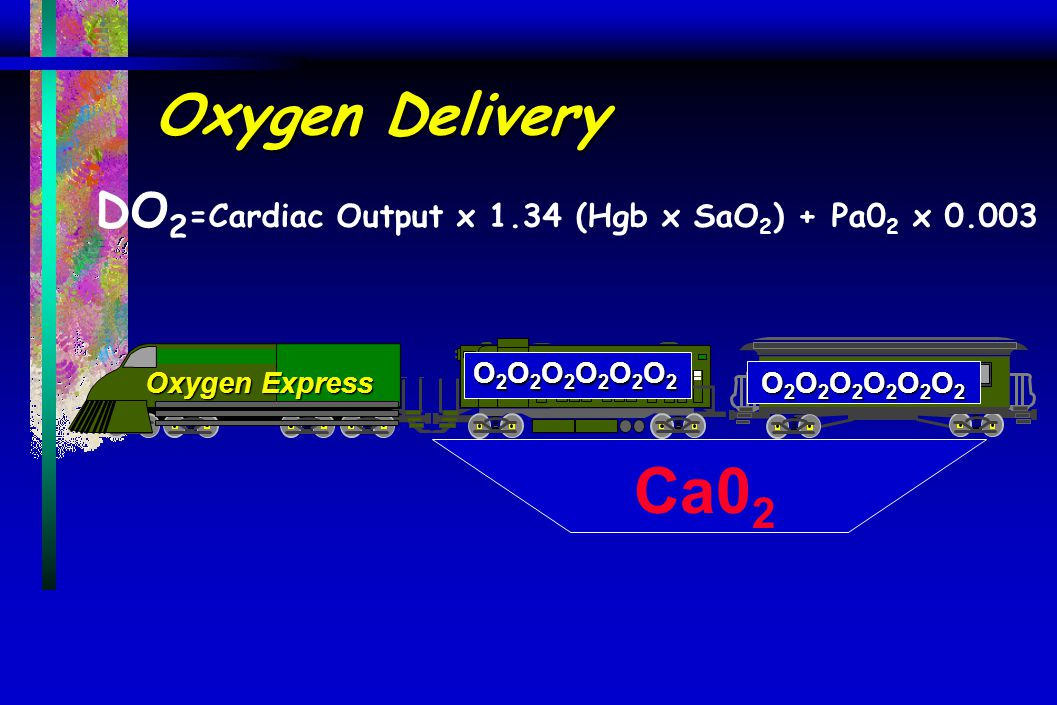 DO2=Cardiac Output x 1.34 (Hgb x SaO2) + Pa02 x 0.003