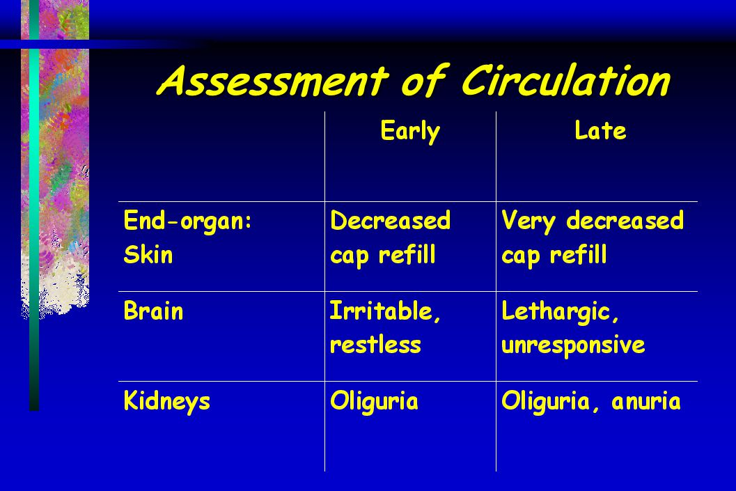 Assessment of Circulation