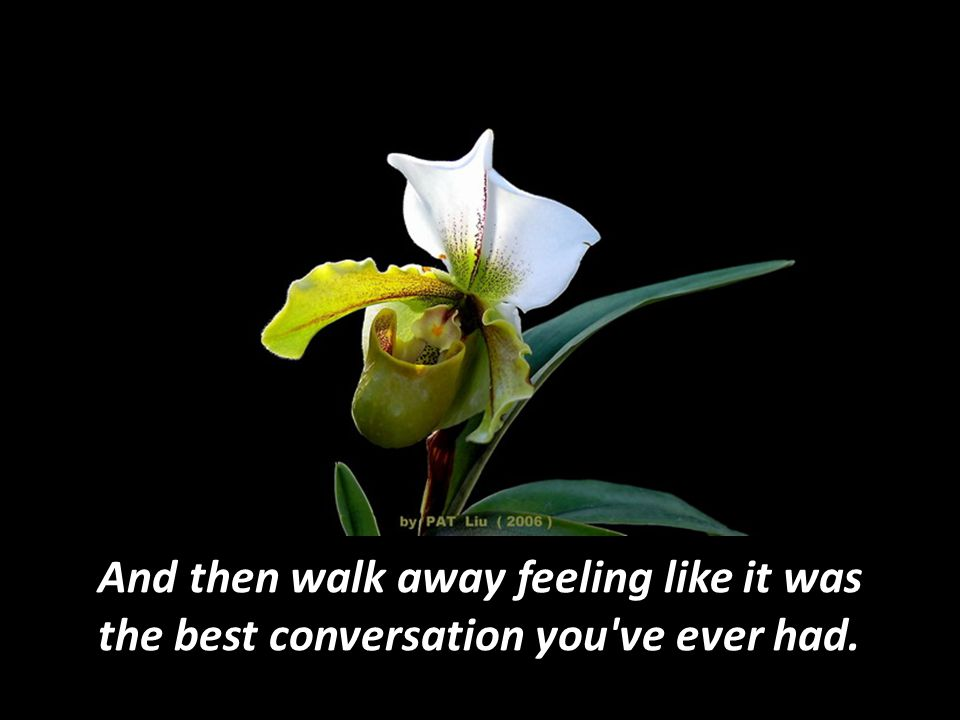 And then walk away feeling like it was the best conversation you ve ever had.