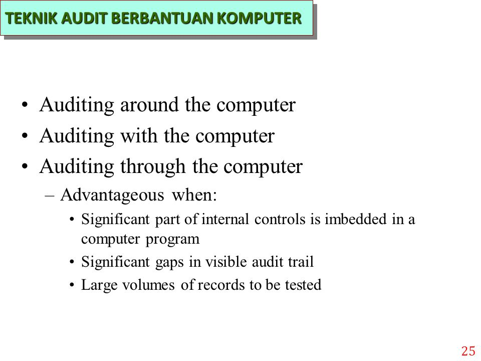 Auditing around the computer Auditing with the computer