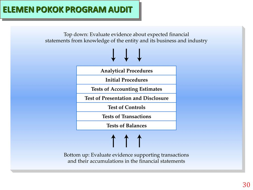ELEMEN POKOK PROGRAM AUDIT